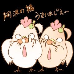 ちょいちょい徳島弁の鶏
