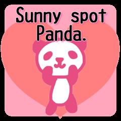 [LINEスタンプ] ひだまりパンダ 〜えいご編〜 (1)