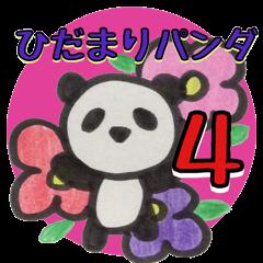 ひだまりパンダ4