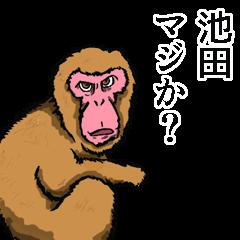 [LINEスタンプ] 池田さんスタンプ