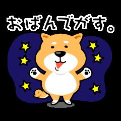 仙台弁をしゃべる柴犬の日常。