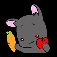 絶滅危惧種うさぎ(アマミノクロウサギ)