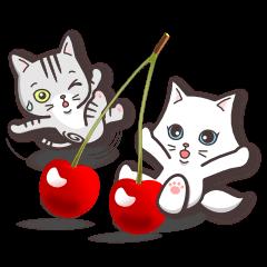 ビビッドカラー[ペルシャ猫こゆき]シリーズ