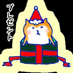 冬のことば ポメじゅんこと柴犬バード