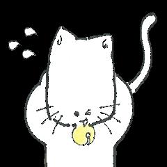 白猫のクロちゃん