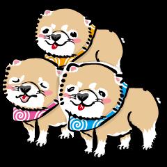 [LINEスタンプ] 江戸っ仔犬 赤毛三兄弟 (1)